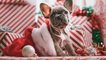 10 errores a evitar en la decoración de Navidad